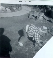 19. 1960-03 rolling a skate in the backyard.