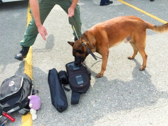 12:30PM - Bomb-sniffing dog checks out my camera bag before we board our buses to the event